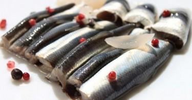 Салака: польза и вред от употребления рыбы