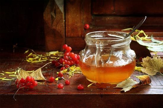 Как употреблять калину с медом?