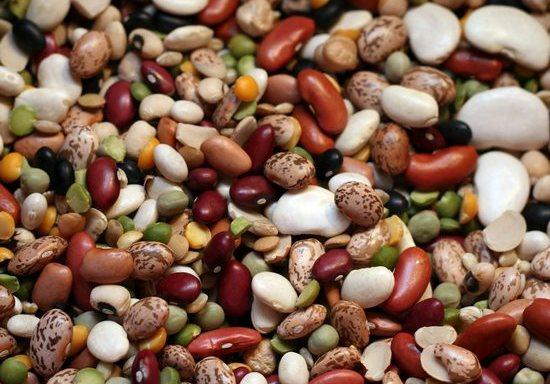 Сколько калорий в фасоли?