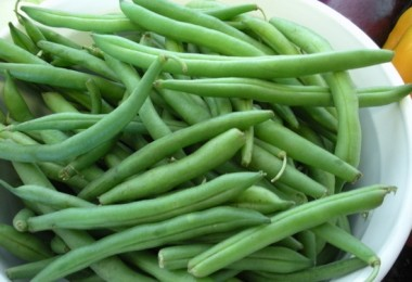 freshgreenbeans
