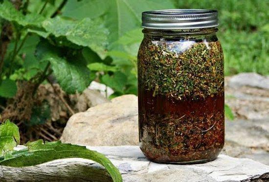 Народные средства на основе трав при климаксе