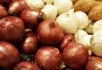 Калорийность лука репчатого в разных видах на 100 грамм