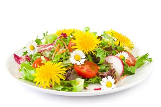 Корень одуванчика, соцветия и листья