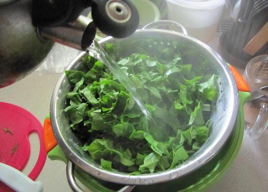 крутым кипятком поливаем нашинкованный шпинат
