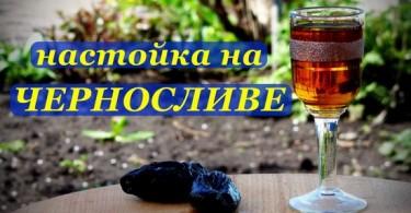 Настойка на черносливе на самогоне: рецепты и секреты выбора ингредиентов