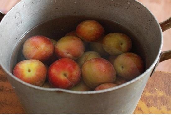 В горячей воде промоем сливовые плоды