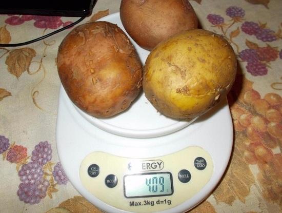картофель отвариваем в мундире