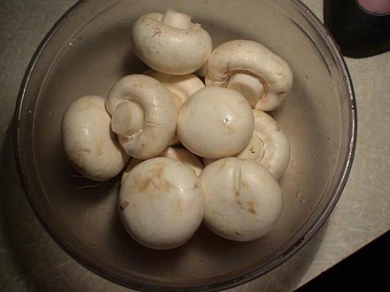 Шляпки грибочков