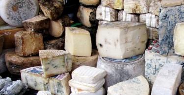 Чем полезен сыр с плесенью и вреден для организма?