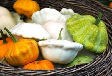 Патиссоны: польза и вред, рецепты с фото