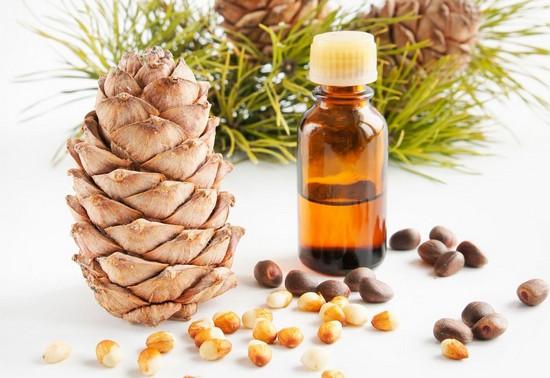 Кедровое масло: полезные свойства и противопоказания, применение