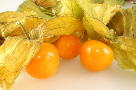 Ценность плодов физалиса