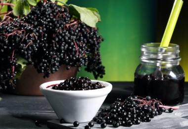 Бузина черная: лечебные свойства и противопоказания