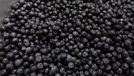 Раскладываем черничные плоды на бумажные полотенца