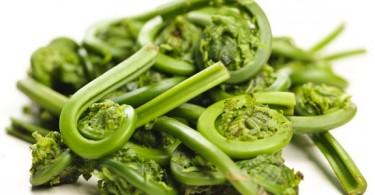 Блюда из папоротника: рецепты салатов (по-корейски, с мясом)