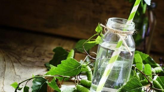 Как сохранить березовый сок