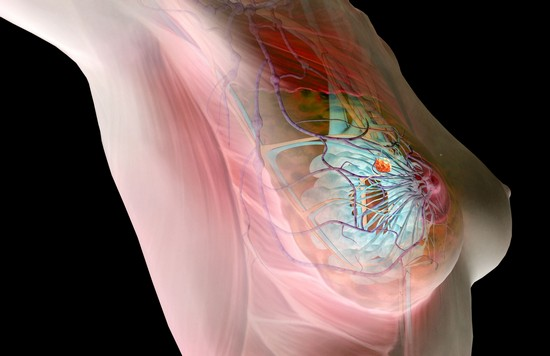 как лечить мастопатию молочной железы
