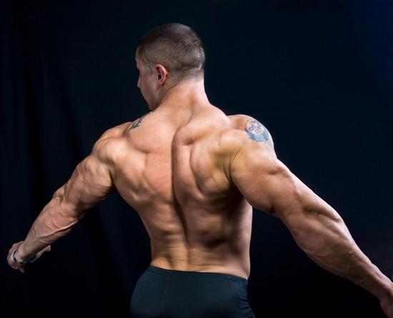 Упражнения на широчайшие мышцы спины для женщин и мужчин