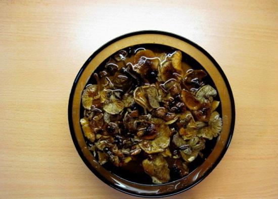 Заливаем сушеные грибочки 1,5 л фильтрованной воды