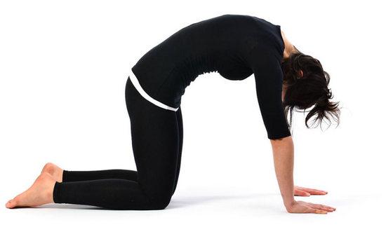 Упражнение «Котик» для гибкости спины
