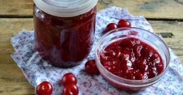 Что приготовить из вишни (вареники, наливку, компот, варенье)