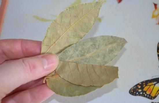 Добавляем в кипящий бульон лавровые листики