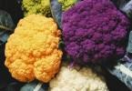 Какие вещества содержатся в съедобных соцветиях?