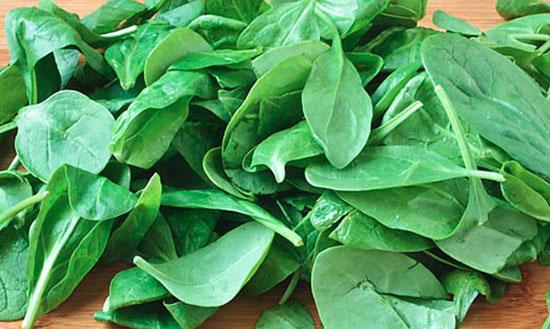 «Витамин из листьев»
