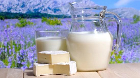 Козье молоко: полезные свойства