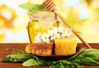 Акациевый мед: полезные свойства