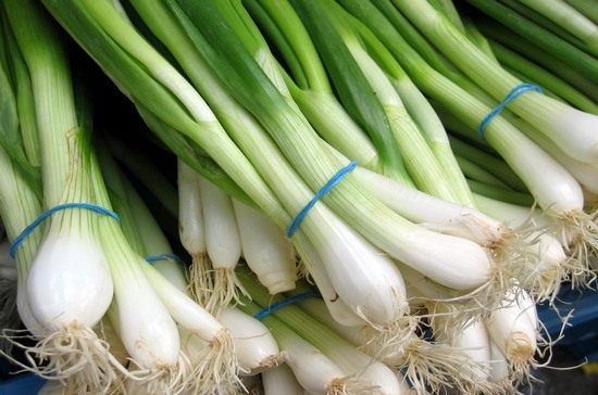 Сколько калорий в зеленом луке?