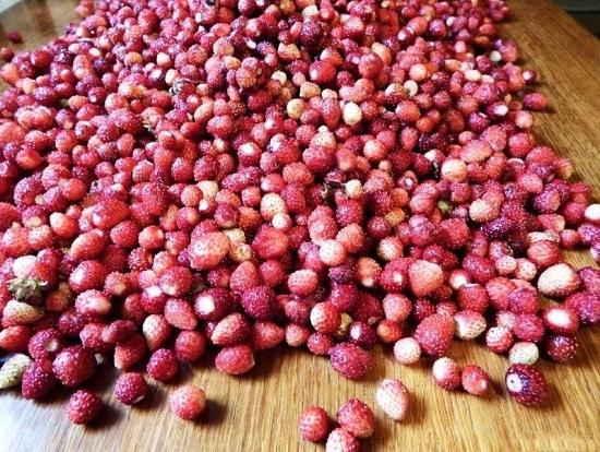 Раскладываем земляничные ягоды и оставляем