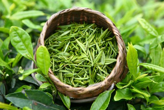 тибетский чай