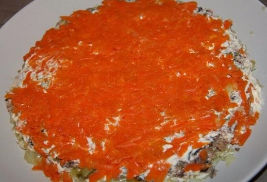 Морковь идет следующим слоем
