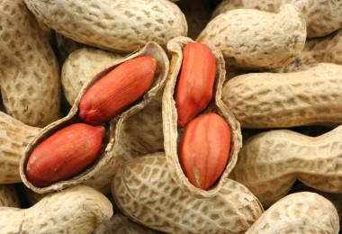 Чем полезен и чем вреден арахис?
