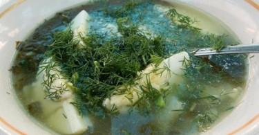 на мясном бульоне суп из ревеня