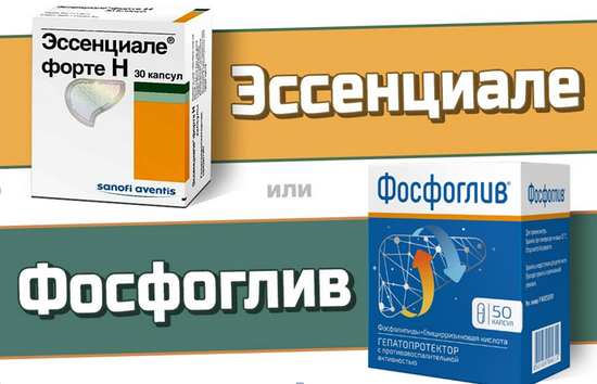 Сравнение препаратов фосфоглив и эссенциале